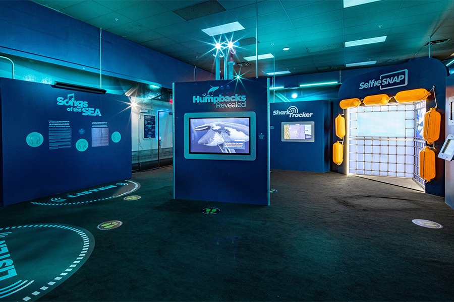 'Undersea Explorer' VR attraction opens in Las Vegas