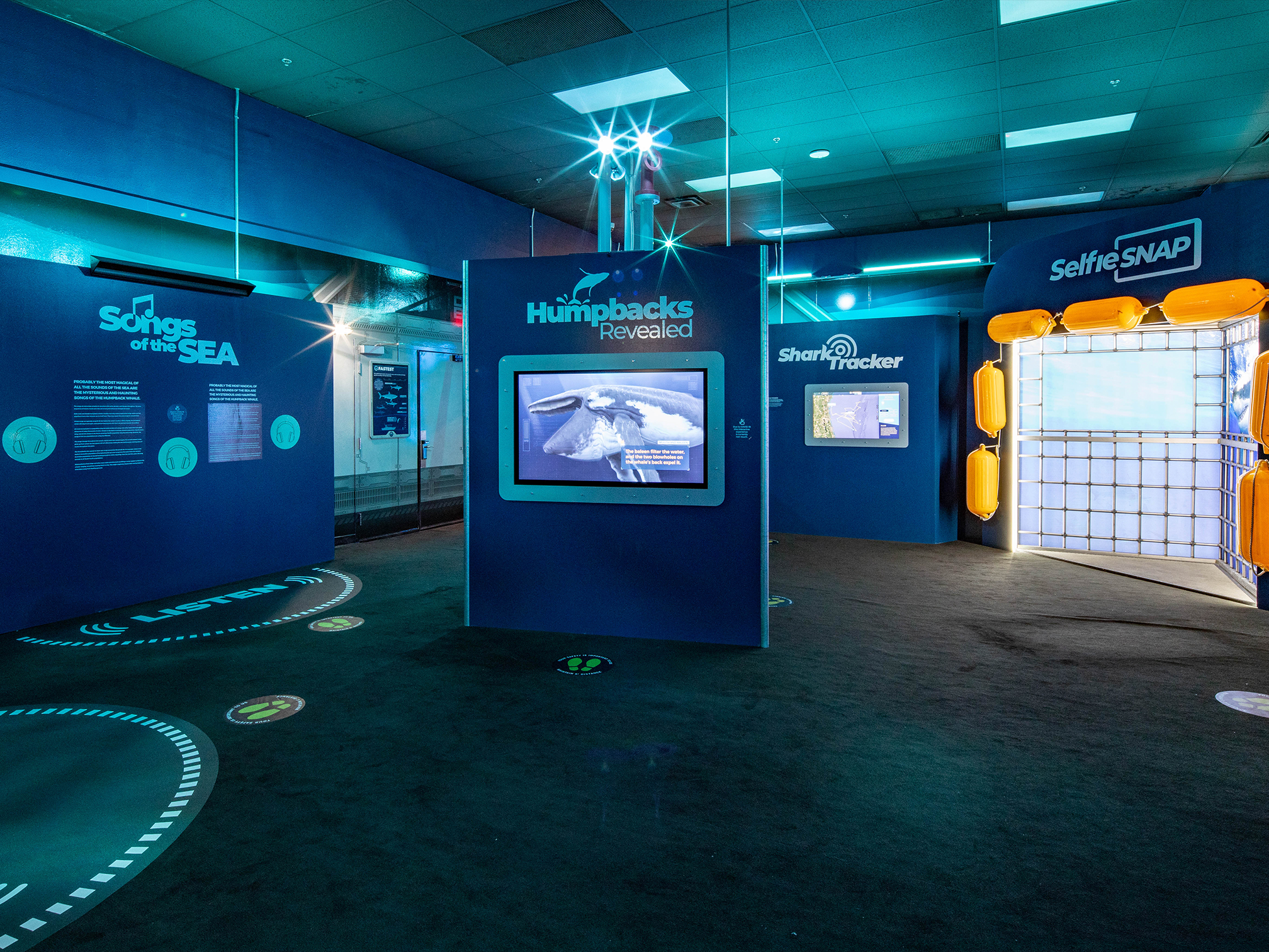 The Making of an Underwater Virtual Reality Experience
